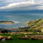 Qué ver en la isla Sur de Nueva Zelanda
