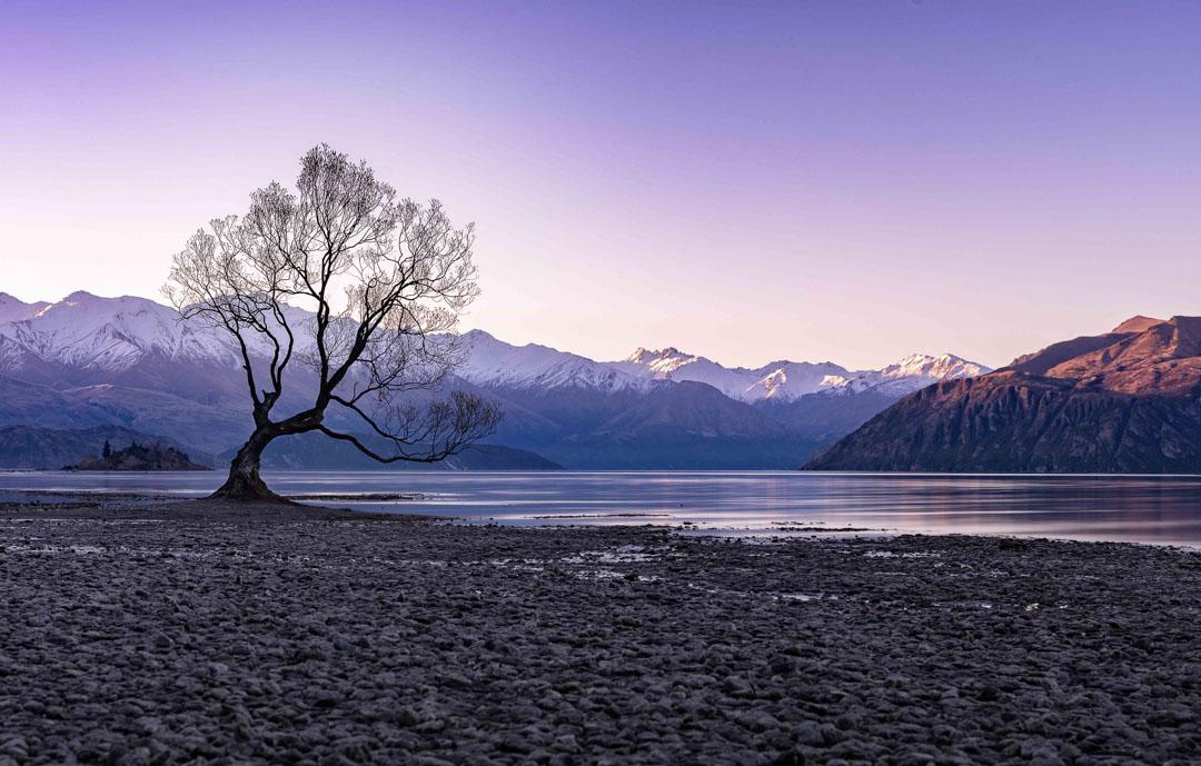isla sur de Nueva Zelanda