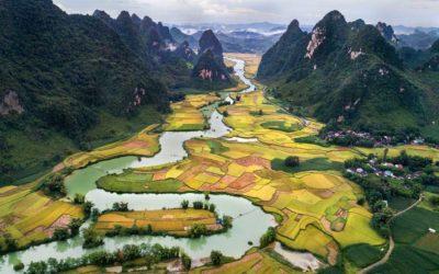 Vietnam derrota al coronavirus. Cero muertes en el país mochilero