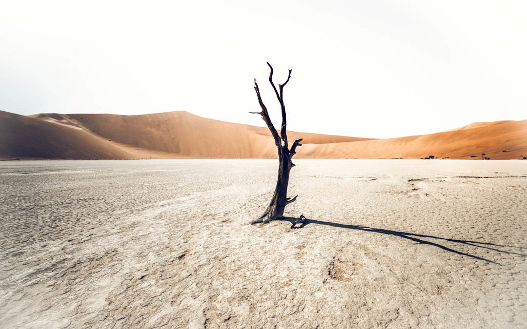 Viajar a Namibia en plena pandemia