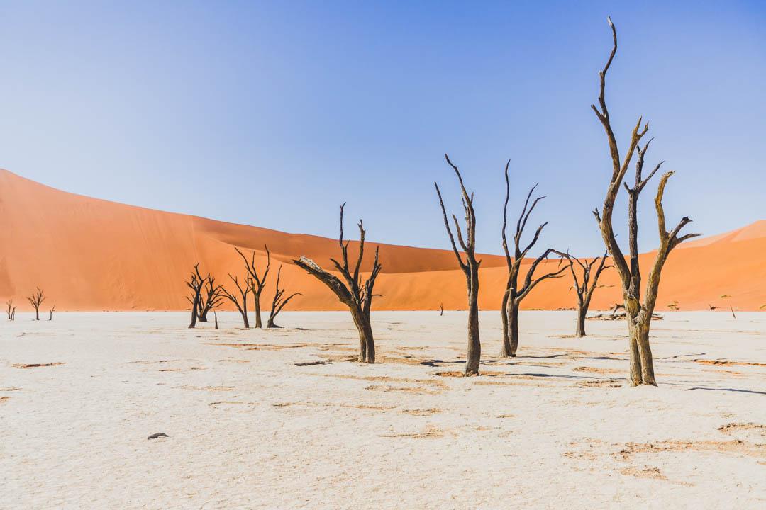 Viajar a Namibia
