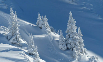 5 sencillos consejos para fotografiar la nieve